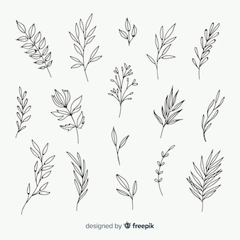 Mão desenhada elementos ornamentais florais