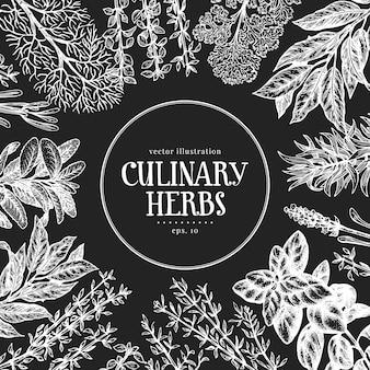 Mão desenhada ervas aromáticas. ilustrações vetoriais no quadro de giz. comida vintage