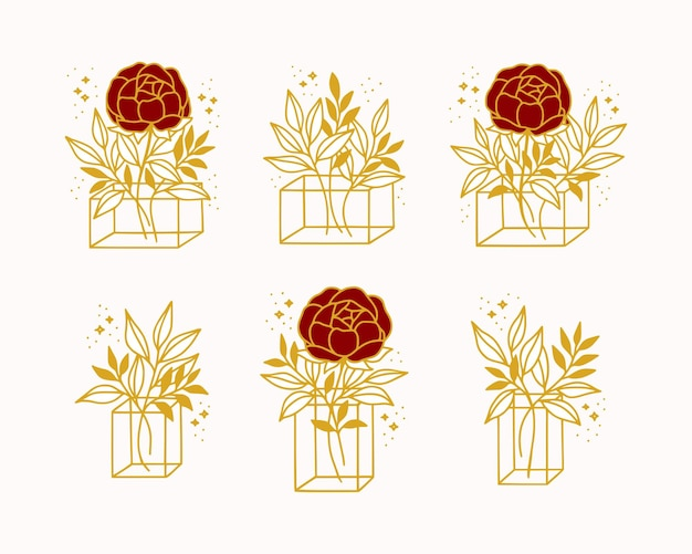 Mão desenhada flor rosa botânica, ramo de folha, vaso e coleção de elementos de arte de linha de caixa de presente