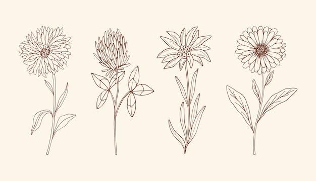 Mão desenhada flores vintage