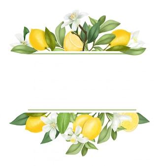 Mão desenhada florescendo galhos de árvores de limão, flores, limões.