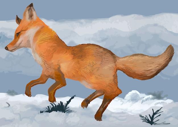 Mão desenhada fox