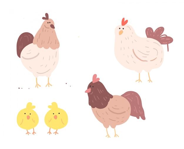 Mão desenhada frango e bebê. galinha, vetorial, ilustração