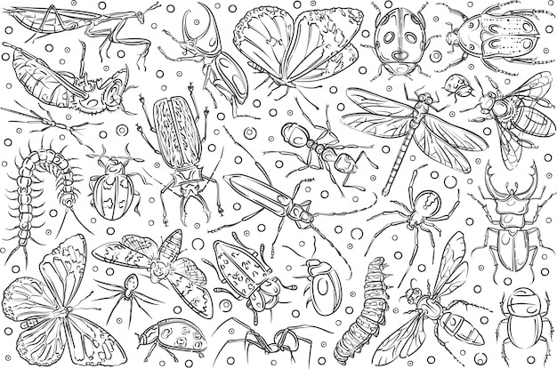 Mão desenhada insetos formiga e borboleta.