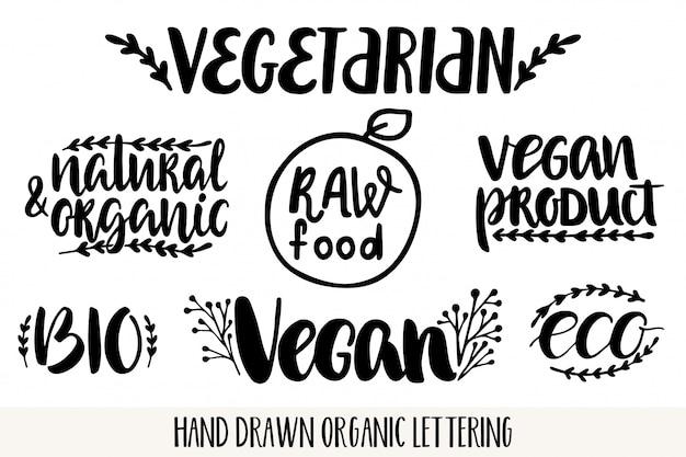 Mão desenhada letras amigáveis de eco