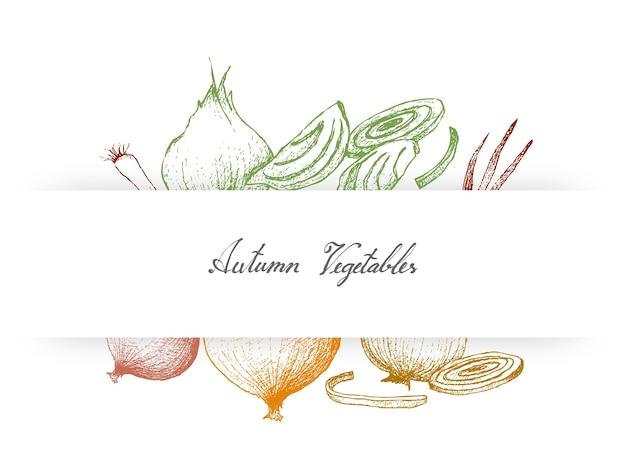 Mão desenhada outono legumes de cebola e cebolinha