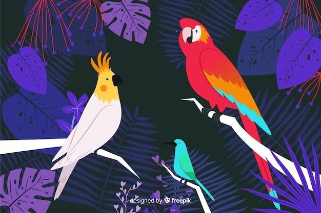 Mão desenhada pássaros tropicais e folhas de fundo