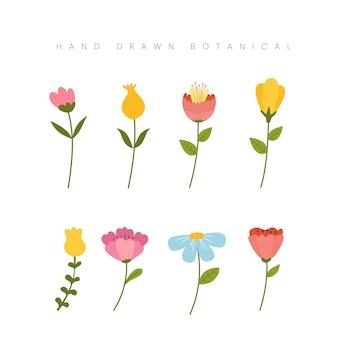 Mão desenhada primavera conceito botânico flor floral ilustração