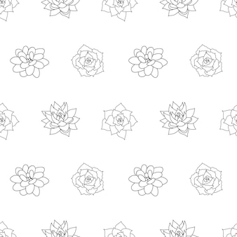 Mão desenhada sem costura padrão suculenta em estilo contorno doodle gráficos esboço casa flor do deserto