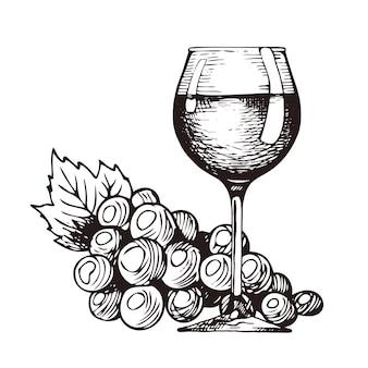 Mão desenhada taça de vinho cacho de uvas
