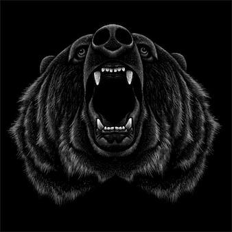 Mão desenhada urso ilustração
