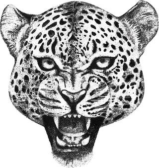 Mão, desenhado, retrato, de, rugindo, leopardo, cabeça