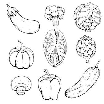 Mão desenhando legumes com repolho, brócolis, berinjela