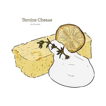 Mão desenhar bolo de queijo terrine