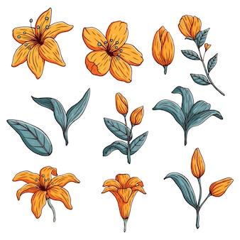 Mão desenhar coleção de flores amarelas com folhas