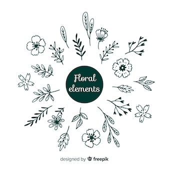 Mão desenhar elementos de decoração floral incolor
