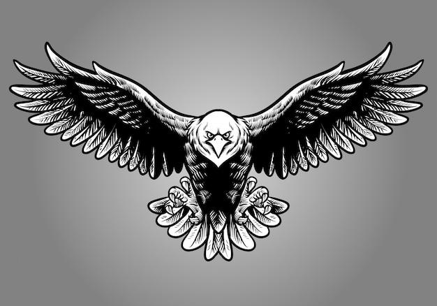 Mão, desenho, estilo, de, águia