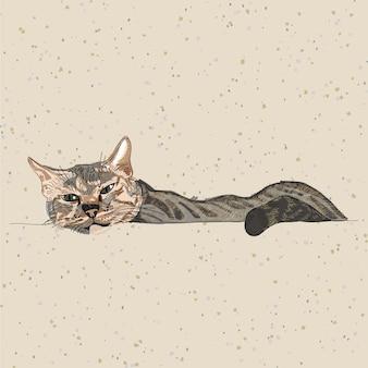 Mão, desenho, gato, ligado, recicle papel