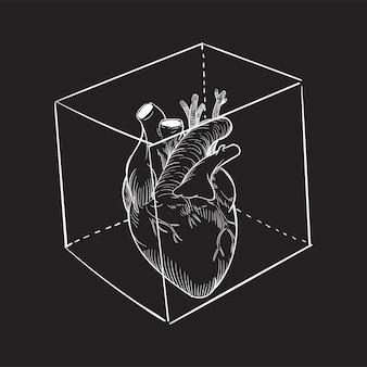 Mão, desenho, ilustração, de, cativado, coração