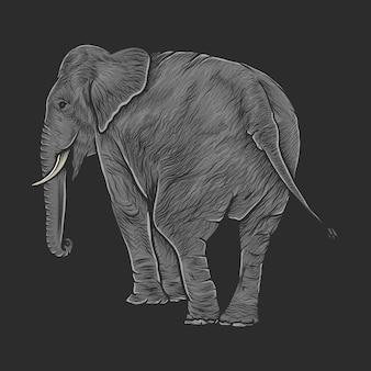 Mão desenho ilustração em vetor elefante vintage
