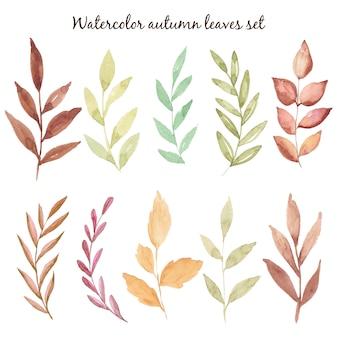 Mão em aquarela outono desenhar folhas