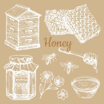 Mão esboçou elementos de mel - abelha, favos de mel, frascos