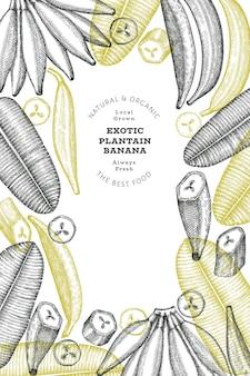 Mão-extraídas esboço estilo plano de fundo de banana. frutas frescas orgânicas. banana exótica retrô