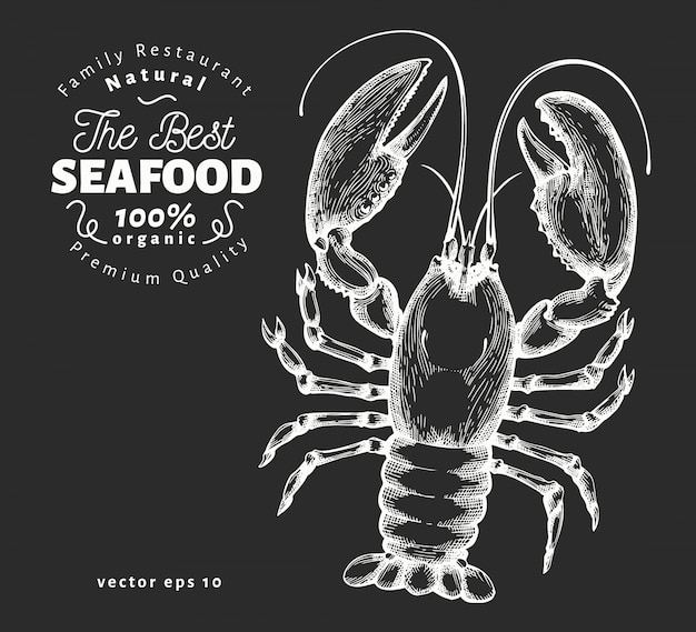 Mão-extraídas ilustração de frutos do mar na lousa.