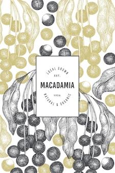 Mão-extraídas modelo de design de ramo e grãos de macadâmia. ilustração do vetor de alimentos orgânicos em fundo branco. ilustração retro da porca. banner botânico de estilo gravado.