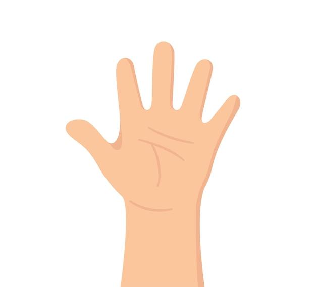 Mão humana com cinco dedos a palma é como um órgão dos sentidos parte do corpo o órgão do tato