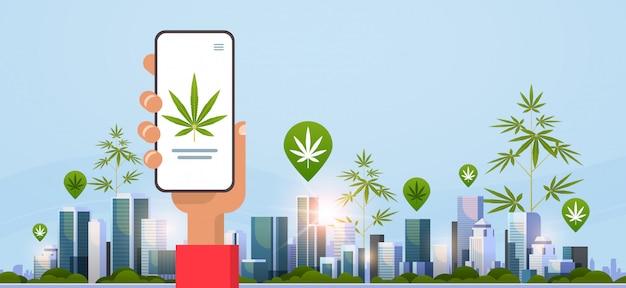 Mão humana segurando smartphone traficante de drogas ordem cannabis cânhamo maconha ou medicamento on-line comprando drogas conceito móvel app paisagem urbana fundo plano horizontal
