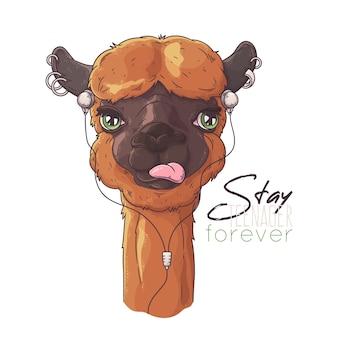 Mão ilustrações desenhadas. retrato de alpaca bonitinho.