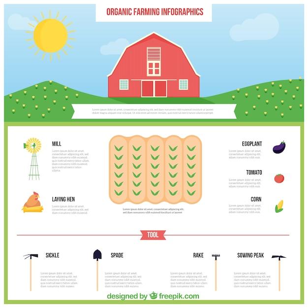 Mão infografia agricultura desenhada