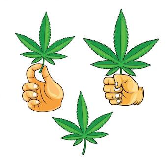 Mão segurando a folha de cannabis