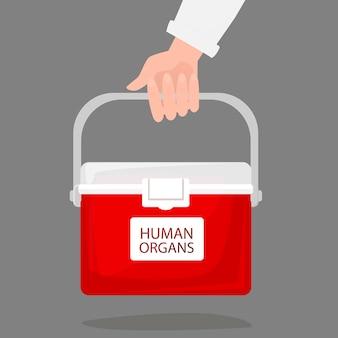 Mão segurando geladeira portátil para transportar órgãos humanos de doadores