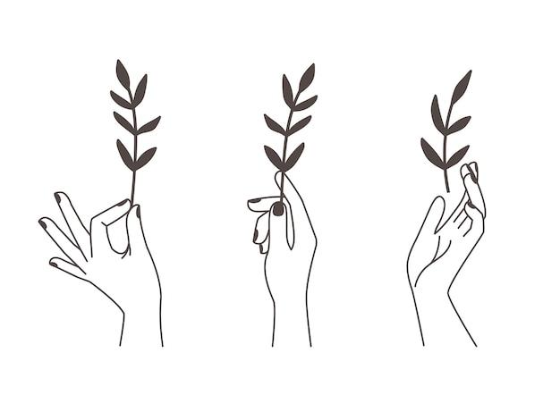 Mãos femininas de tatuagem.