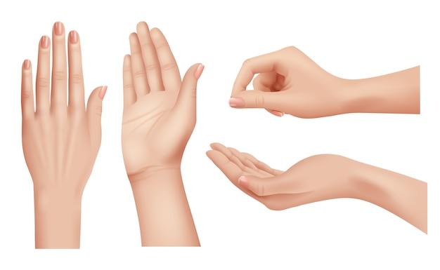 Mãos realistas. gestos humanos palmas e dedos apontando mão pessoas comunicação linguagem closeup de vetor. ilustração de mão, palma e unha humanas realistas