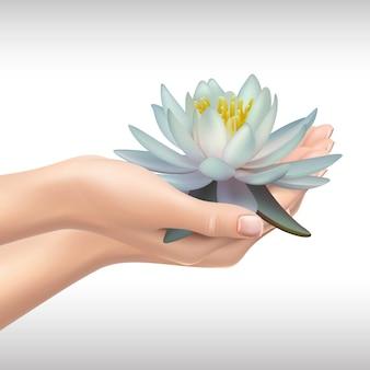 Mãos segurando água lilly ou lotus