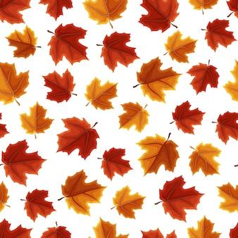 Maple leaf tree autumn padrão sem emenda de outono