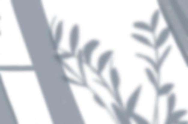 Maquete de composição de vista superior de efeitos de sombra realistas com janela e sombras de folhas de plantas caseiras