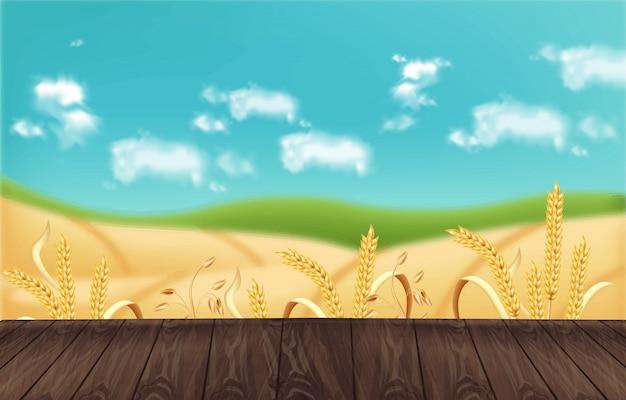 Maquete de fundo realista de campos de aveia