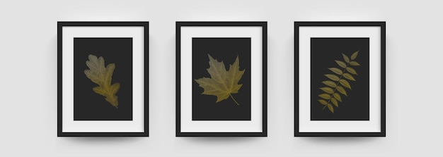 Maquete de molduras, imagens de parede ou cartazes vetoriais caixa branca e preta moderna. maquetes de moldura de foto em 3d, moldura de fotografia vertical a4 ou a4 com folhagem