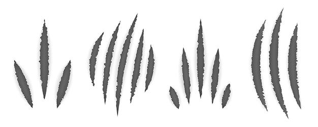 Marcas de garras de animais (gato, tigre, leão, urso)