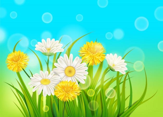 Margaridas e dentes de leão de primavera fundo grama verde fresca, cores agradáveis suculentas da primavera