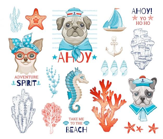 Marinheiros de cão bonito com desenhos animados esboçar elemento do mar. filhotes engraçados de pug, chihuahua, buldogue francês.