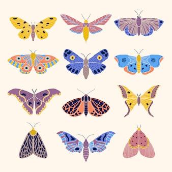 Mariposas e borboletas