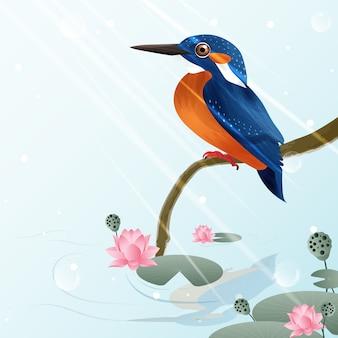 Martinho pescatore pássaro e ilustração de lótus