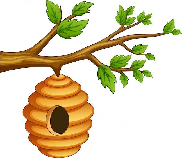 Mascote de abelha com dois lados diferentes