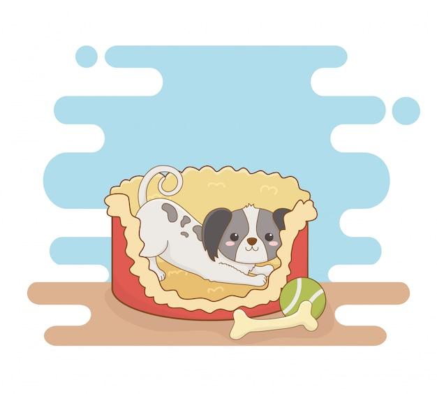 Mascote de cão pequeno bonito com cama e osso