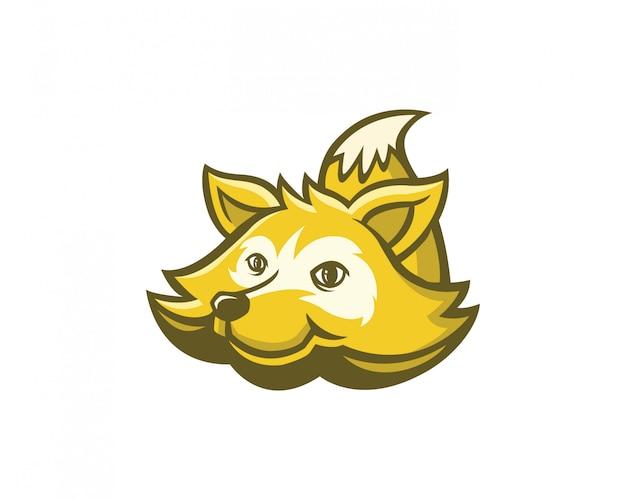 Mascote de raccoon
